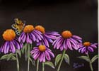 Cone Flowers & Butterfly 12x16 Woil/Oil $10.00
