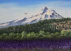 Mt. Hood Lavender Field in Woil or Oil 12x16